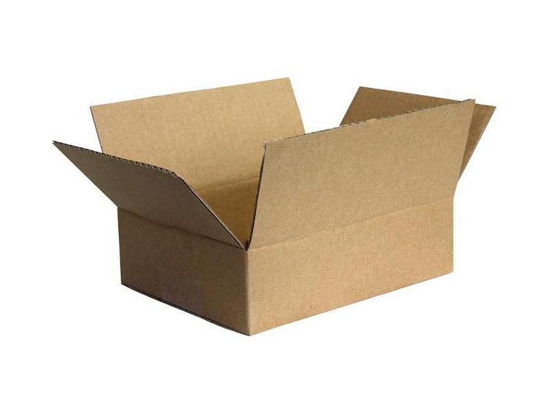 Carton 22 x 16 x<br>12cm (No. 2)
