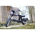 Elektro Scooter Coco Bike E-Chopper mit Straßenzulassung bis zu 48 km/h schnell - ca. 40-45 km Reichweite, 60V   2000W   28AH Akku - M4